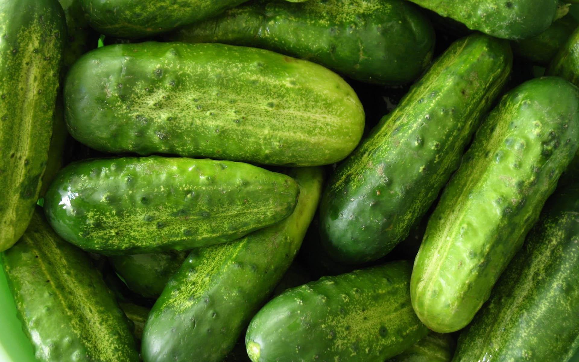 Самые читаемые статьи: Варикоз лечение помидором